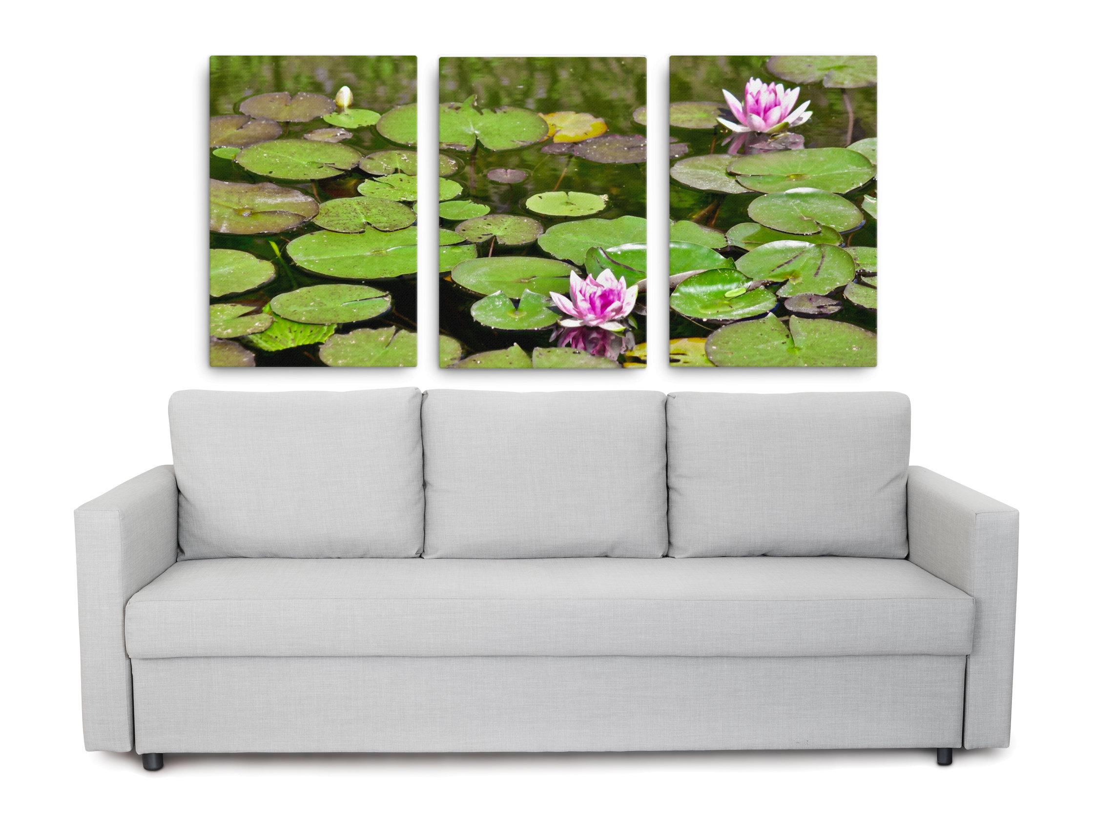 Pictures of pink water lilies in a pond as a triptych canvas print