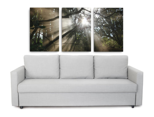 Product picture of sun wall art set of 3 sunbeam pictures of a beautiful sun-dappled forest